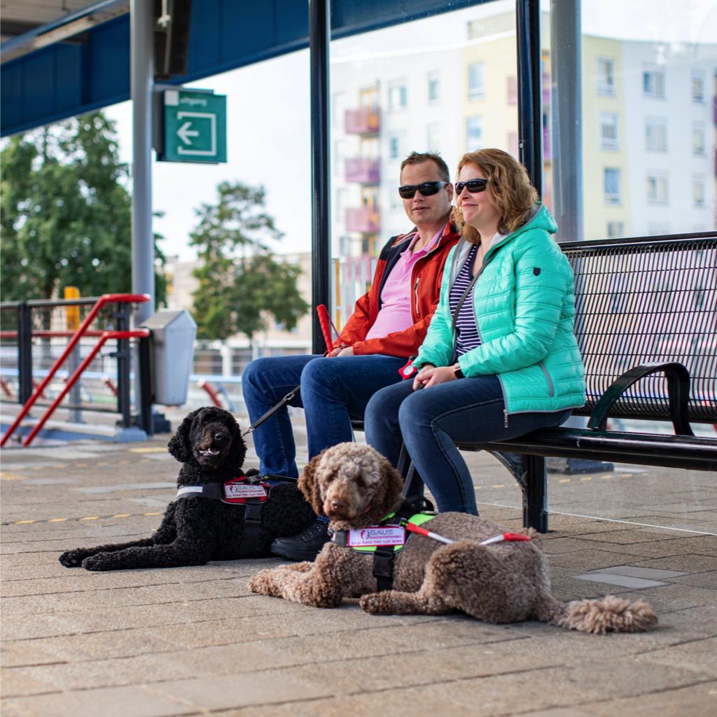 Peter en Susan zitten op een bankje op het perron van een treinstation. Voor hen liggen hun geleidehonden Ruby en Ona.